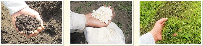 土作りは有機質肥料のみ化学肥料は一切使用しません