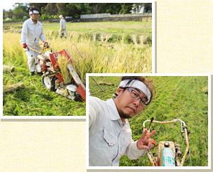 横野雄一 1971年生まれ東京都出身